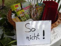 2009_schwetzingen07