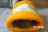 Franziska_Tell_Freddy