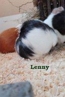 Mona_Eisenkolb_Lenny